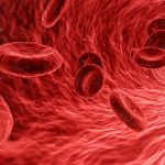echantillon de sang adn
