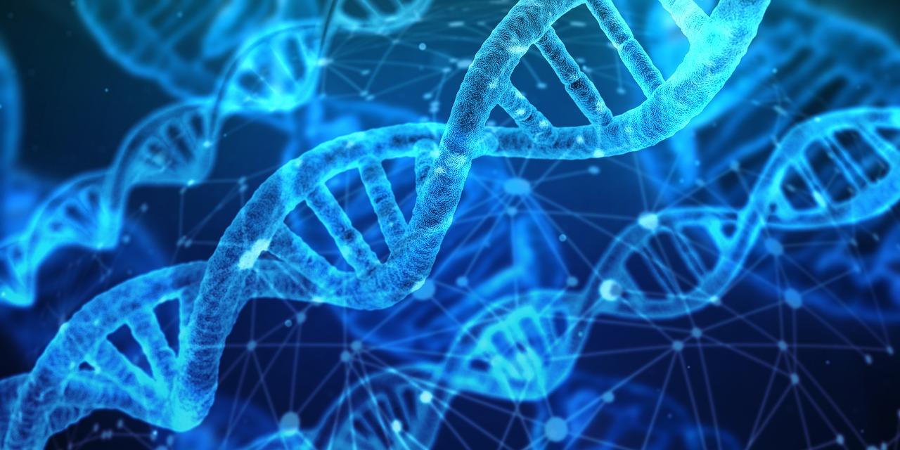 Comment obtenir très rapidement un kit de prélèvement ADN ?