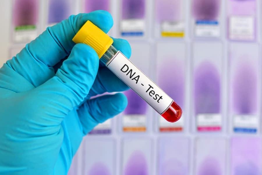 En combien de temps les résultats d'un test ADN de paternité sont-ils disponibles ?