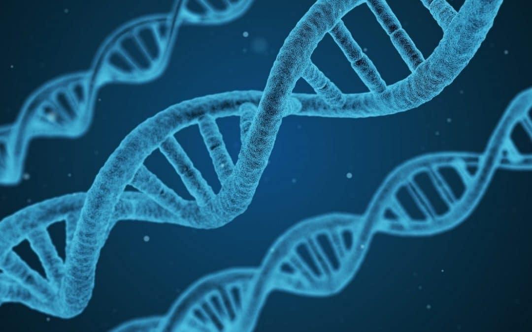 Comment faire un test ADN pour connaitre ses origines ?