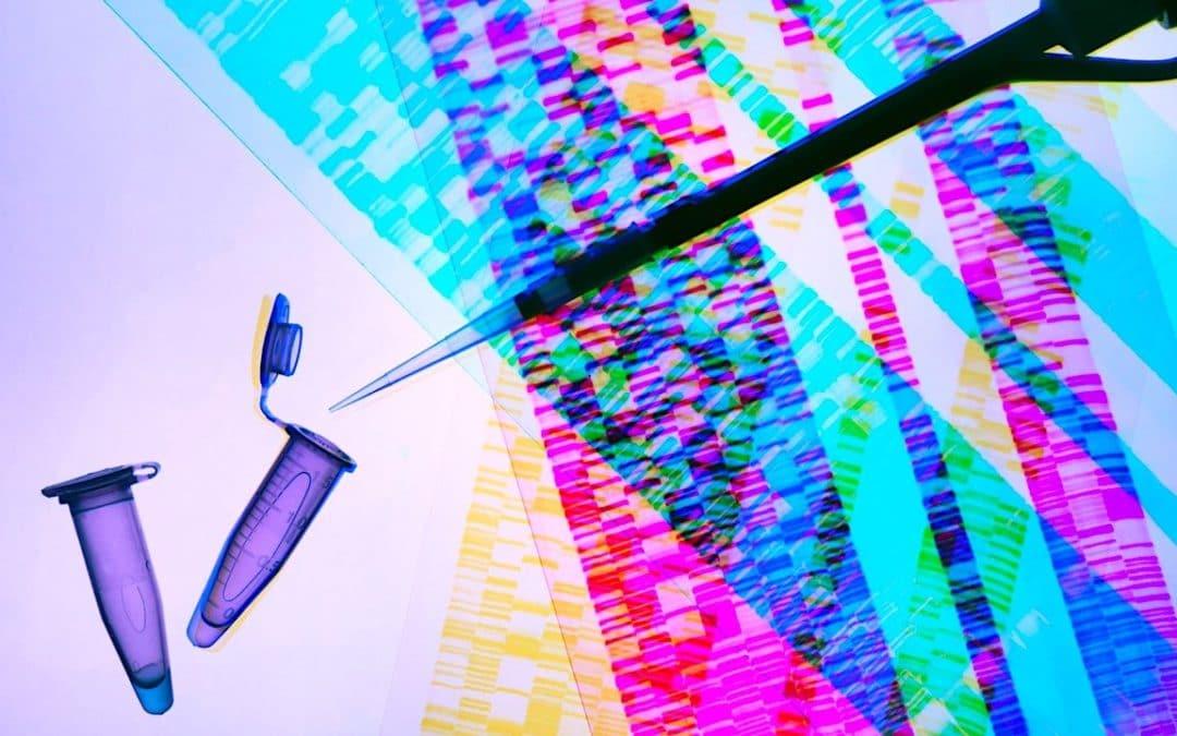 Test ADN labo