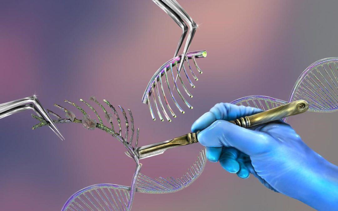 Fiche d'information sur l'analyse scientifique de l'Acide désoxyribonucléique (ADN)