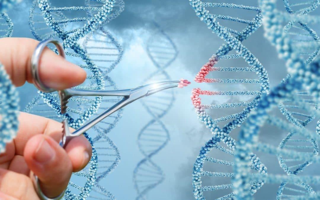 Les différentes maladies détectables à la suite d'un test ADN