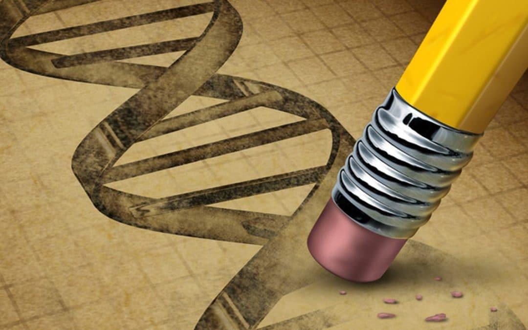 Caractéristiques et déroulement de la mutation ADN