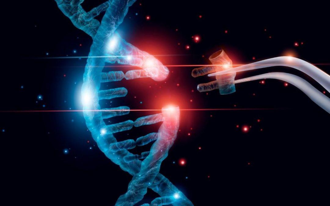sequence ADN