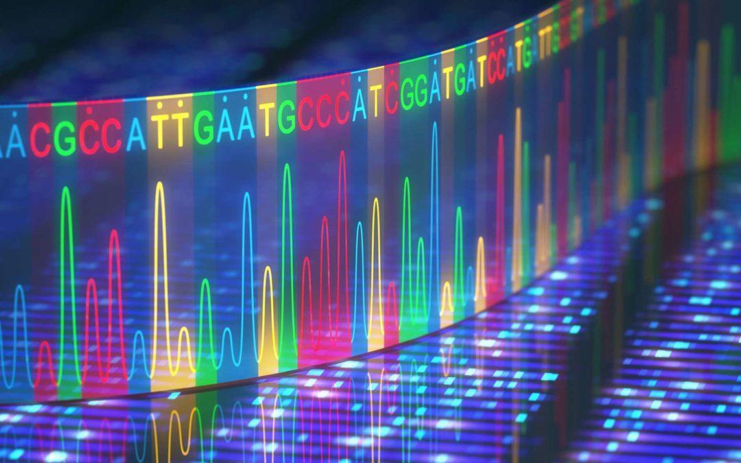 Carte génétique: les différences entre une carte génétique et une carte physique